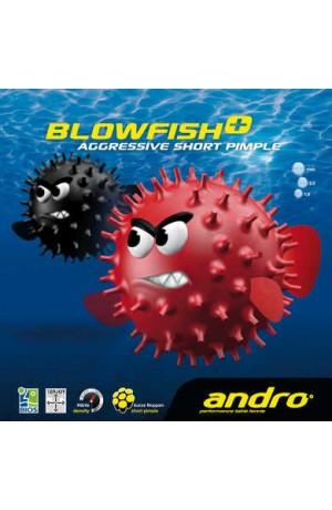 http://www.castanosport.fr/181-121-thickbox/blowfish.jpg